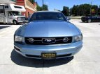 2007 Ford Mustang for sale 101545607