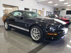 2007 Ford Mustang for sale 101549717