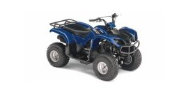 2008 Yamaha Grizzly 125 80 specifications