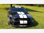 2009 Ford Mustang Shelby GT500 Coupe for sale 101547978