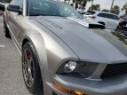 2009 Ford Mustang for sale 101486859