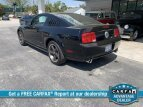 2009 Ford Mustang for sale 101491636