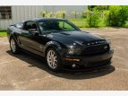 2009 Ford Mustang Shelby GT500 for sale 101571074