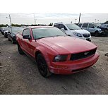 2009 Ford Mustang Coupe for sale 101624980