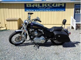 2009 Harley-Davidson Sportster for sale 200641740