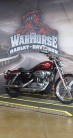 2009 Harley-Davidson Sportster Custom for sale 200976314