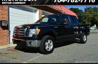 2010 Ford F150 for sale 101160538