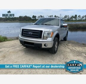 2010 Ford F150 for sale 101329255
