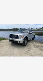 2010 Ford F150 for sale 101368990