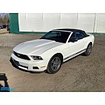 2010 Ford Mustang Convertible for sale 101480262