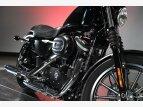 2010 Harley-Davidson Sportster for sale 201173647