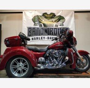 2010 Harley-Davidson Trike for sale 200938001