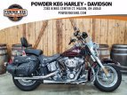 2011 Harley-Davidson Softail for sale 201164114