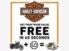 2011 Harley-Davidson Softail for sale 201173510