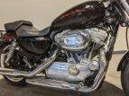 2011 Harley-Davidson Sportster for sale 201076858