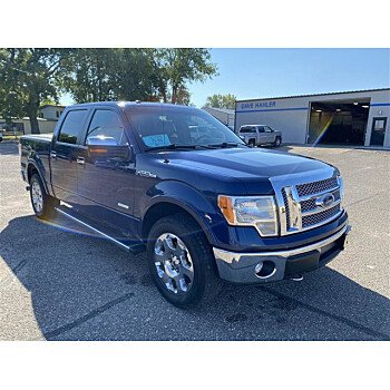 2012 Ford F150 for sale 101602200