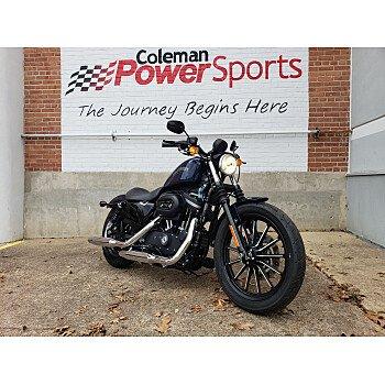 2012 Harley-Davidson Sportster for sale 200651942