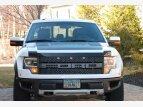2013 Ford F150 4x4 Crew Cab SVT Raptor for sale 100765817