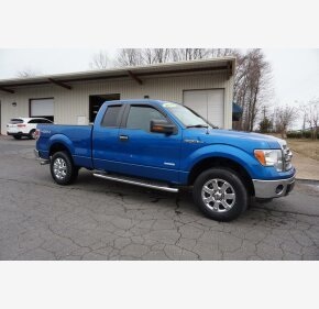 2013 Ford F150 for sale 101104439