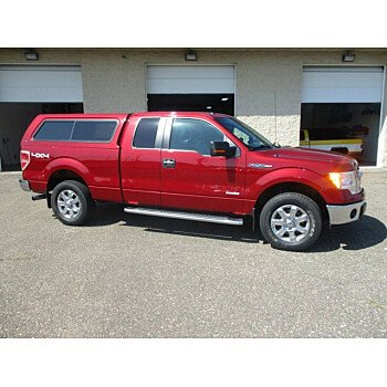 2013 Ford F150 for sale 101175833