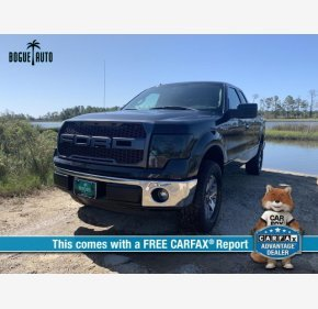 2013 Ford F150 for sale 101208078