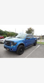 2013 Ford F150 4x4 SuperCab for sale 101405976