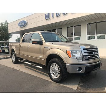 2013 Ford F150 for sale 101571274