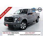 2013 Ford F150 for sale 101601845