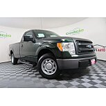 2013 Ford F150 for sale 101602149
