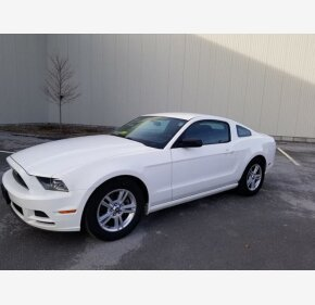 2013 Ford Mustang for sale 101322186