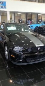 2013 Ford Mustang for sale 101398931