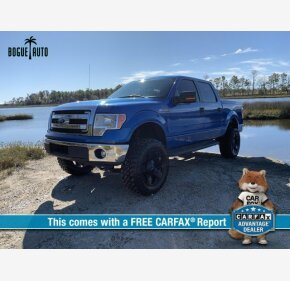 2014 Ford F150 for sale 101243563