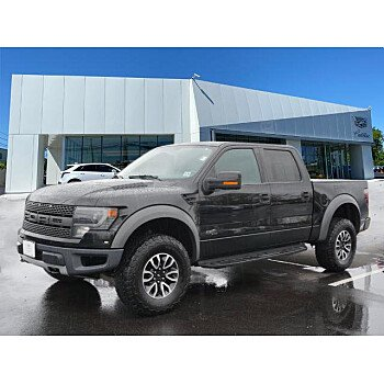 2014 Ford F150 for sale 101524940