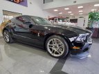 2014 Ford Mustang for sale 101486873