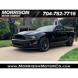 2014 Ford Mustang Shelby GT500 Coupe for sale 101492763