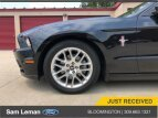 2014 Ford Mustang for sale 101556214