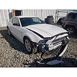 2014 Ford Mustang Coupe for sale 101629941