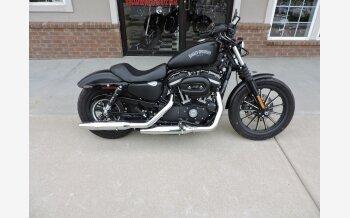 2014 Harley-Davidson Sportster Iron 883 for sale 200699742