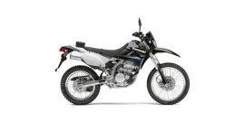2014 Kawasaki KLX110 250S specifications