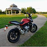 2014 MV Agusta Brutale 800 for sale 200757971