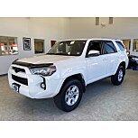 2014 Toyota 4Runner for sale 101591384