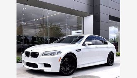 2015 BMW M5 for sale 101393883