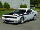 2015 Dodge Challenger for sale 101503949