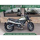 2015 Ducati Scrambler Urban Enduro for sale 200915369