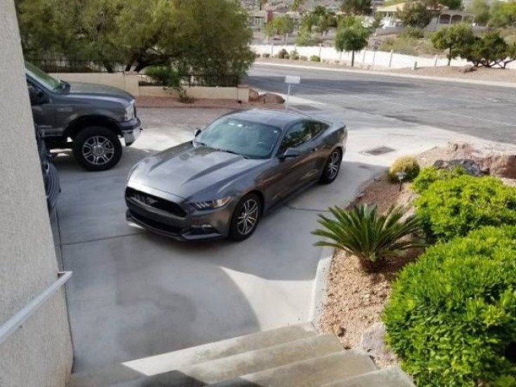 2015 Ford Mustang for sale 100992531
