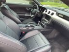 2015 Ford Mustang GT Coupe for sale 101597103
