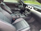 2015 Ford Mustang for sale 101597232