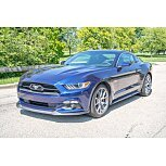 2015 Ford Mustang for sale 101598325
