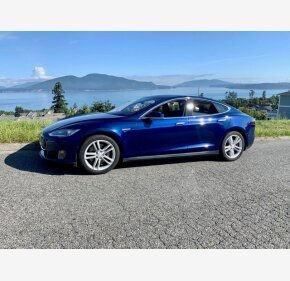 2015 Tesla Model S for sale 101356658