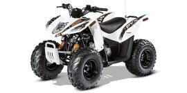 2016 Arctic Cat 90 DVX specifications